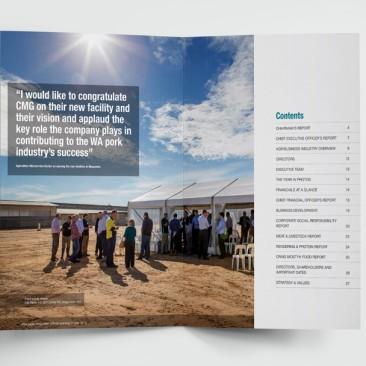 Craig Mostyn - Annual Report